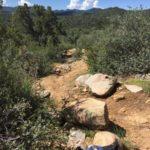 A rocky backcountry mountain bike trail.