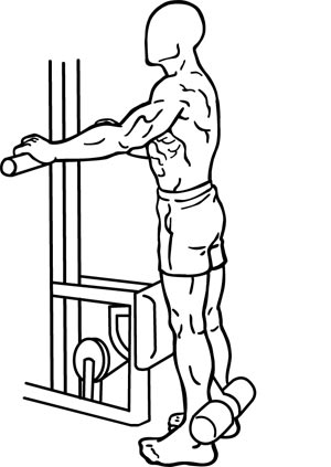 Leg standing curl single Are Sitting